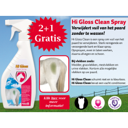 Hi Gloss Clean Spray 2+1 Gratis